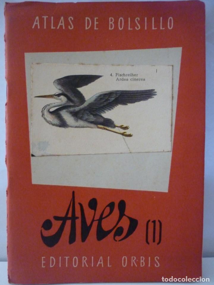 Libros: ATLAS DE BOLSILLO. AVES (1 ) Y ( 2 ). EDITORIAL ORBIS. 1955. IGNACIO DE SAGARRA - Foto 2 - 166673366