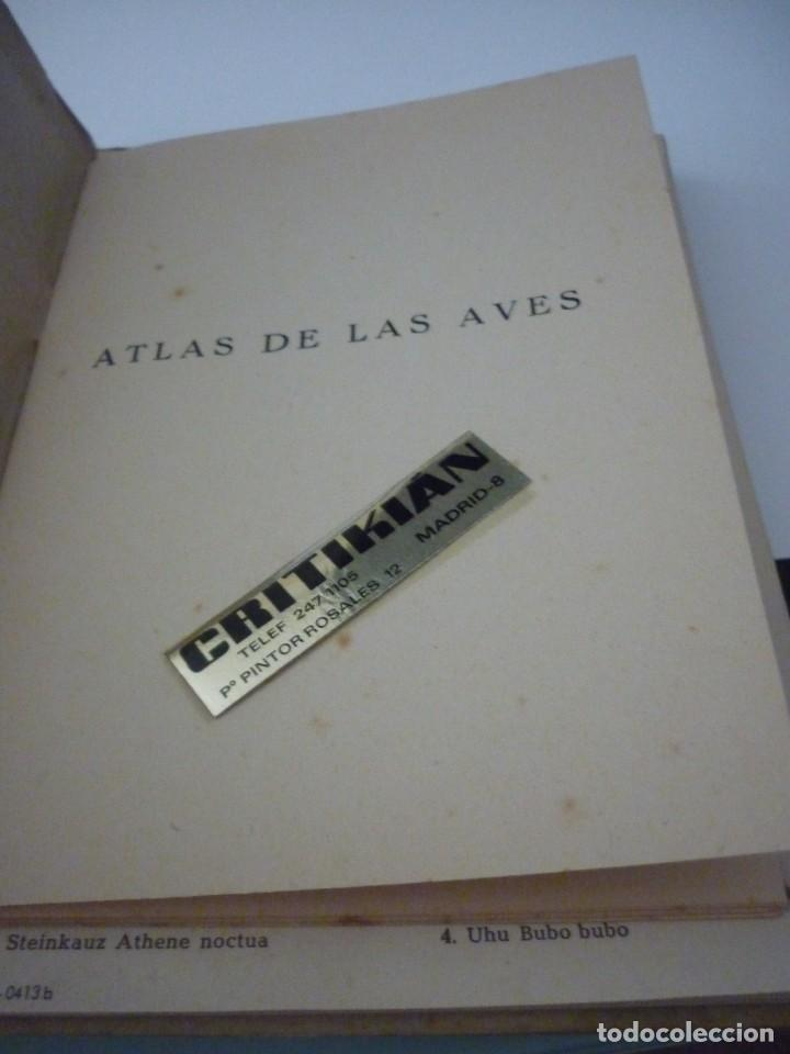 Libros: ATLAS DE BOLSILLO. AVES (1 ) Y ( 2 ). EDITORIAL ORBIS. 1955. IGNACIO DE SAGARRA - Foto 3 - 166673366