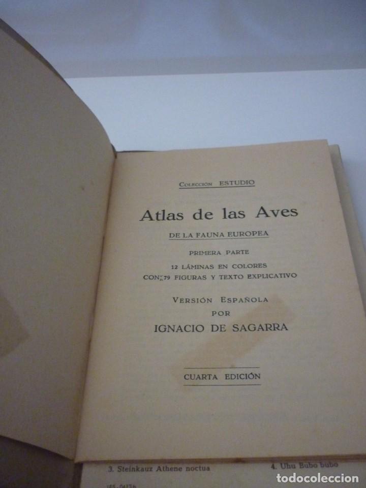 Libros: ATLAS DE BOLSILLO. AVES (1 ) Y ( 2 ). EDITORIAL ORBIS. 1955. IGNACIO DE SAGARRA - Foto 4 - 166673366