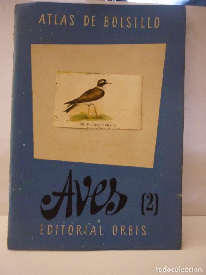 Libros: ATLAS DE BOLSILLO. AVES (1 ) Y ( 2 ). EDITORIAL ORBIS. 1955. IGNACIO DE SAGARRA - Foto 8 - 166673366