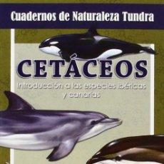 Libros: CETÁCEOS (2014) - VICTOR J. HERNÁNDEZ - ISBN: 9788494311208. Lote 152280697