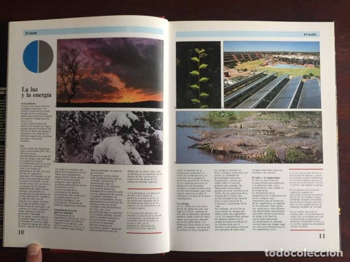 Libros: Ciencias Ecología. Colección gran enciclopedia de las ciencias Estudio sobre las ciencias ecologicas - Foto 3 - 180492091