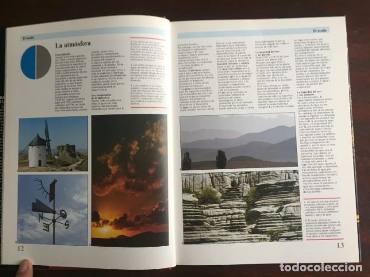 Libros: Ciencias Ecología. Colección gran enciclopedia de las ciencias Estudio sobre las ciencias ecologicas - Foto 4 - 180492091