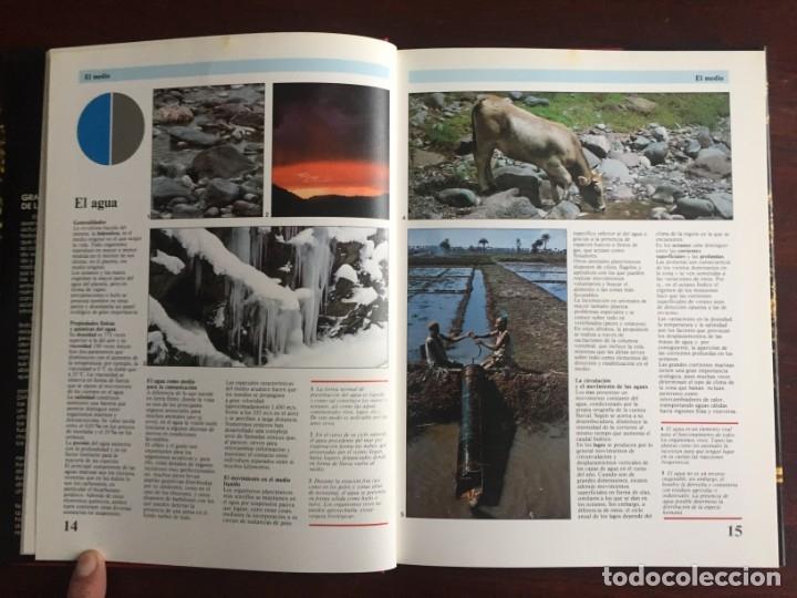 Libros: Ciencias Ecología. Colección gran enciclopedia de las ciencias Estudio sobre las ciencias ecologicas - Foto 5 - 180492091