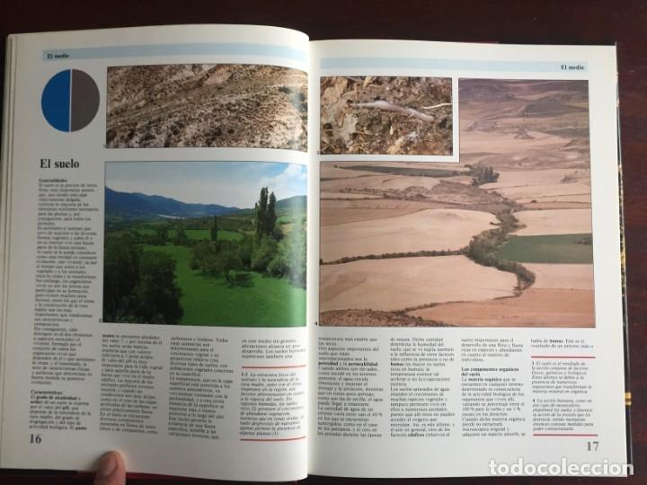 Libros: Ciencias Ecología. Colección gran enciclopedia de las ciencias Estudio sobre las ciencias ecologicas - Foto 6 - 180492091