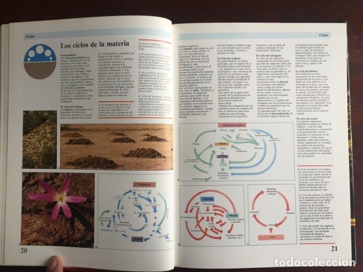 Libros: Ciencias Ecología. Colección gran enciclopedia de las ciencias Estudio sobre las ciencias ecologicas - Foto 7 - 180492091
