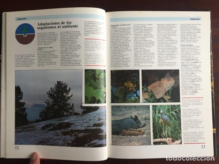 Libros: Ciencias Ecología. Colección gran enciclopedia de las ciencias Estudio sobre las ciencias ecologicas - Foto 8 - 180492091