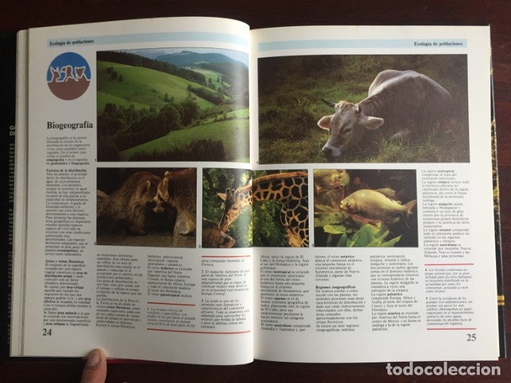 Libros: Ciencias Ecología. Colección gran enciclopedia de las ciencias Estudio sobre las ciencias ecologicas - Foto 9 - 180492091