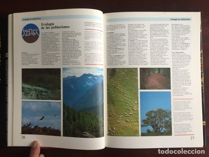 Libros: Ciencias Ecología. Colección gran enciclopedia de las ciencias Estudio sobre las ciencias ecologicas - Foto 10 - 180492091