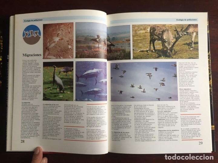 Libros: Ciencias Ecología. Colección gran enciclopedia de las ciencias Estudio sobre las ciencias ecologicas - Foto 11 - 180492091