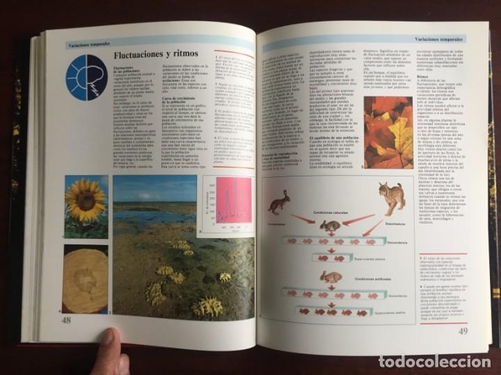 Libros: Ciencias Ecología. Colección gran enciclopedia de las ciencias Estudio sobre las ciencias ecologicas - Foto 14 - 180492091