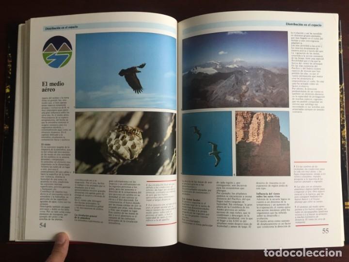Libros: Ciencias Ecología. Colección gran enciclopedia de las ciencias Estudio sobre las ciencias ecologicas - Foto 15 - 180492091