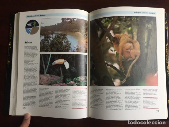 Libros: Ciencias Ecología. Colección gran enciclopedia de las ciencias Estudio sobre las ciencias ecologicas - Foto 16 - 180492091