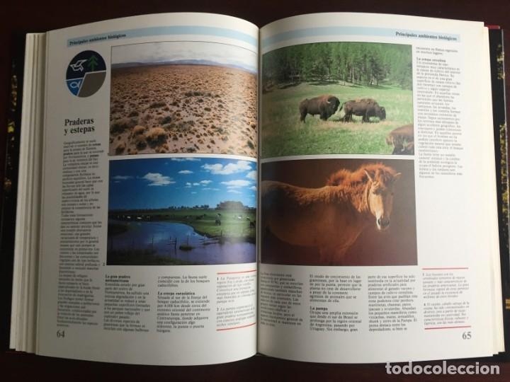 Libros: Ciencias Ecología. Colección gran enciclopedia de las ciencias Estudio sobre las ciencias ecologicas - Foto 17 - 180492091