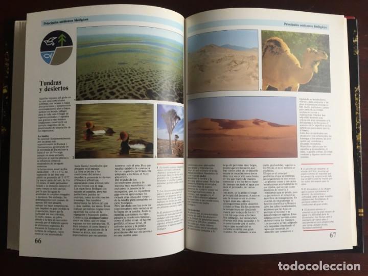 Libros: Ciencias Ecología. Colección gran enciclopedia de las ciencias Estudio sobre las ciencias ecologicas - Foto 18 - 180492091