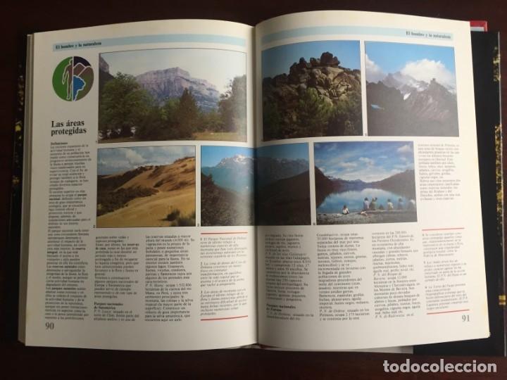 Libros: Ciencias Ecología. Colección gran enciclopedia de las ciencias Estudio sobre las ciencias ecologicas - Foto 21 - 180492091
