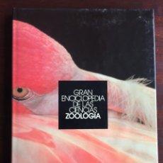 Libros: CIENCIAS ZOOLOGÍA. COLECCIÓN GRAN ENCICLOPEDIA DE LAS CIENCIAS. COMPLETO ESTUDIO SOBRE LA ZOOLOGÍA . Lote 180495257