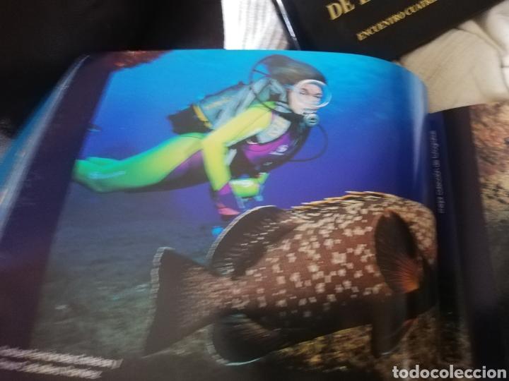Libros: Libro dedicado al Open de fotografía de Isla del Hierro.considerado.. mejores fondos del mundo - Foto 5 - 182597603