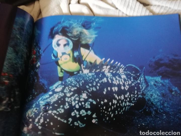 Libros: Libro dedicado al Open de fotografía de Isla del Hierro.considerado.. mejores fondos del mundo - Foto 7 - 182597603