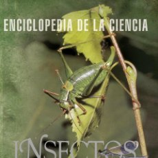 Libros: LIBRO ENCICLOPEDIA DE LA CIENCIA INSECTOS (TIKAL). Lote 182895297