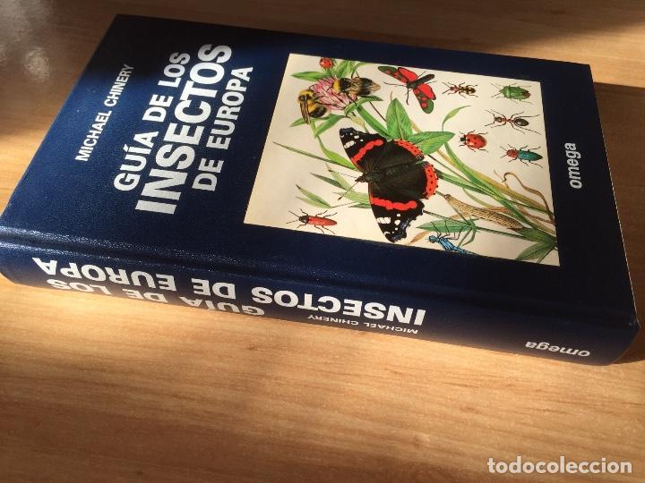 Libros: Guía de los Insectos de Europa - Foto 3 - 189244237