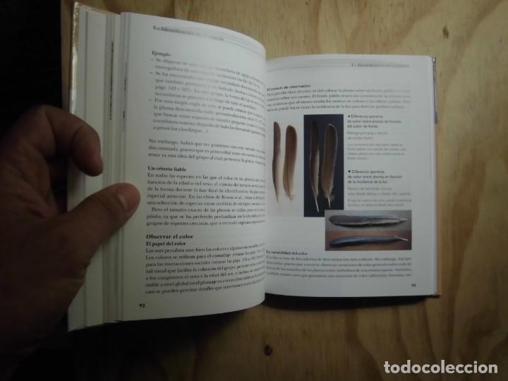 Libros: RECONOCER FÁCILMENTE LAS PLUMAS CLOÉ FRAIGNEAU LAS GUÍAS DEL NATURALISTA ORNITOLOGÍA - Foto 5 - 190044823