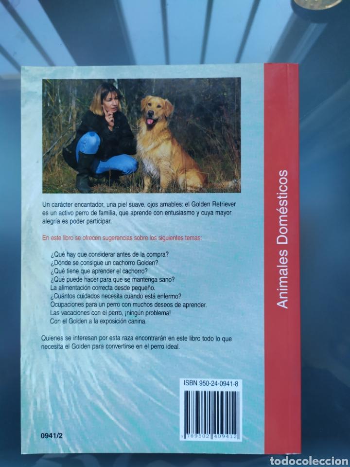 Libros: NUEVO Libro raza perro Golden Retriever - Foto 2 - 190228515