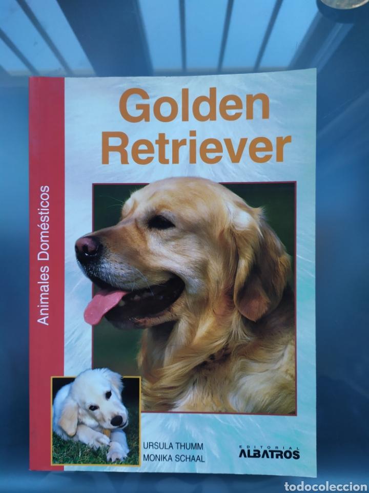 NUEVO LIBRO RAZA PERRO GOLDEN RETRIEVER (Libros Nuevos - Ciencias, Manuales y Oficios - Biología)