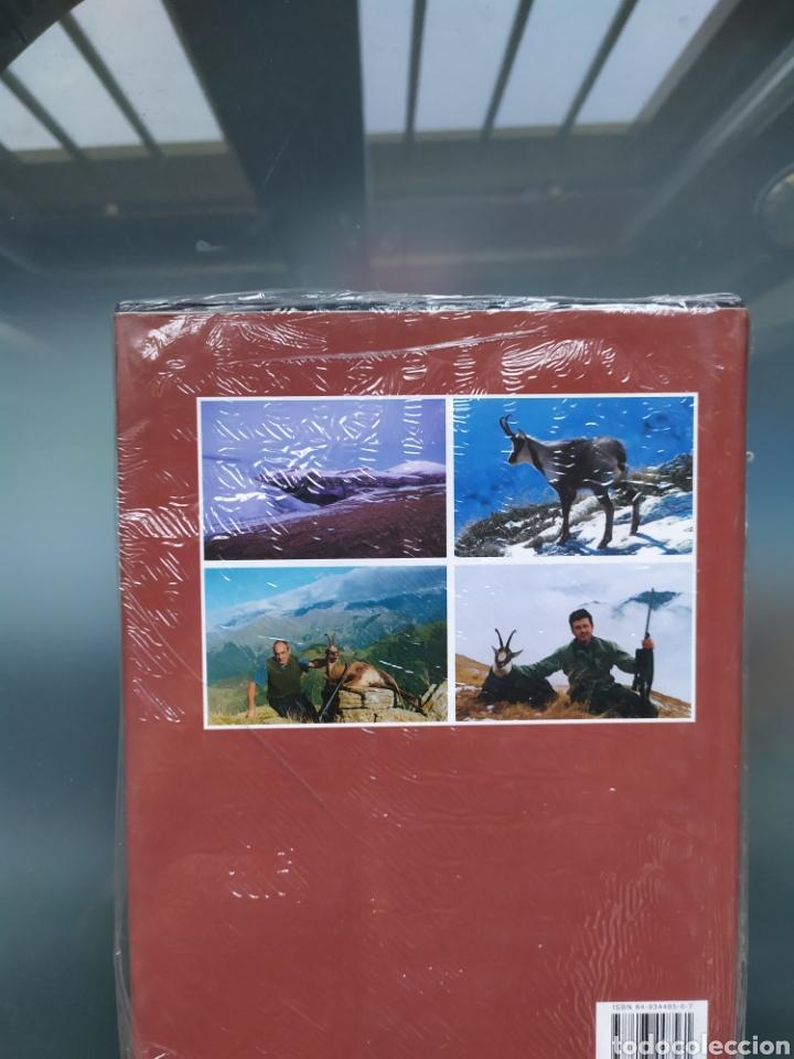 Libros: Rupicapra un mundo de montañas,rebecos y caza - Foto 2 - 184401648