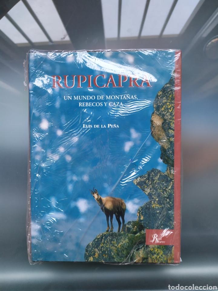 RUPICAPRA UN MUNDO DE MONTAÑAS,REBECOS Y CAZA (Libros Nuevos - Ciencias, Manuales y Oficios - Biología)