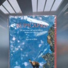 Libros: RUPICAPRA UN MUNDO DE MONTAÑAS,REBECOS Y CAZA. Lote 184401648