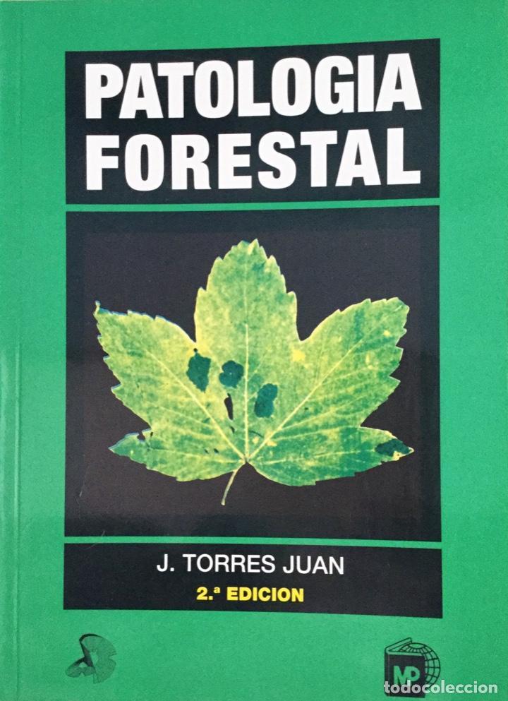 PATOLOGIA FORESTAL. MUNDI. PRENSA. REF: F 43 (Libros Nuevos - Ciencias, Manuales y Oficios - Biología)