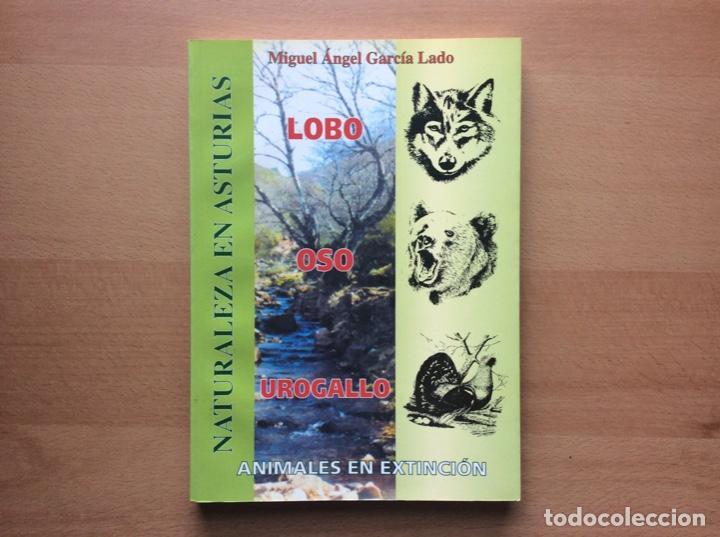 NATURALEZA EN ASTURIAS - LOBO, OSO, UROGALLO - ANIMALES EN EXTINCIÓN - GARCÍA LADO, MIGUEL ÁNGEL. (Libros Nuevos - Ciencias, Manuales y Oficios - Biología)
