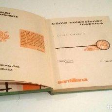 Libros: CÓMO COLECCIONAR INSECTOS. J. CAPILLA CABALLERO.. Lote 223988663