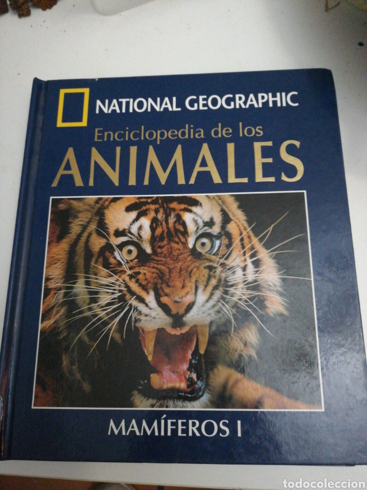 NATIONAL GEOGRAPHIC. MAMÍFEROS 1. (Libros Nuevos - Ciencias, Manuales y Oficios - Biología)
