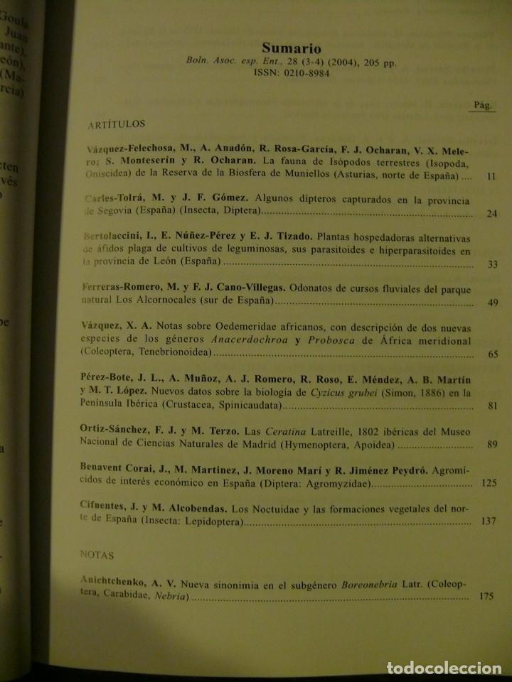 Libros: Boletín de la Asociación Española de Entomología año 2004 volumen 28 (3-4) - Foto 2 - 224756143