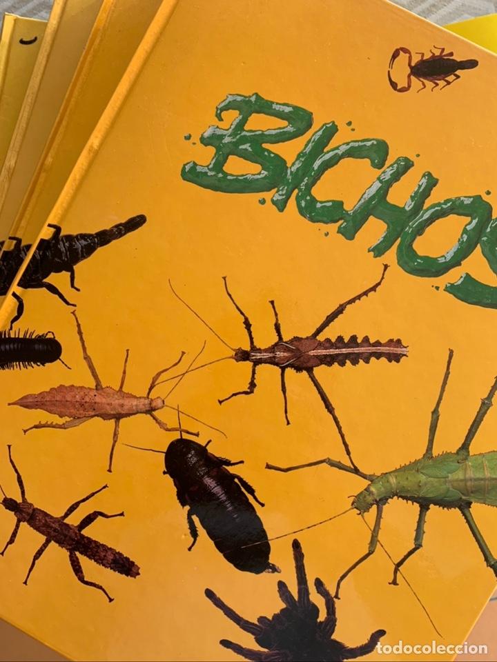 BICHOS (Libros Nuevos - Ciencias, Manuales y Oficios - Biología)