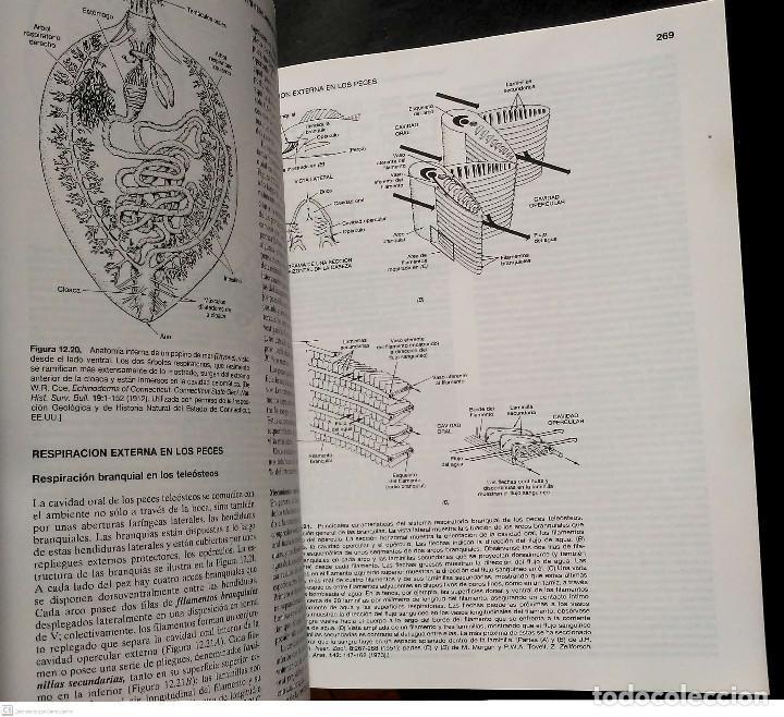 Libros: Fisiología animal.Richard W.Hill/Gordon A.Wyse.Akal.1ªEdición.1992. - Foto 4 - 228137625