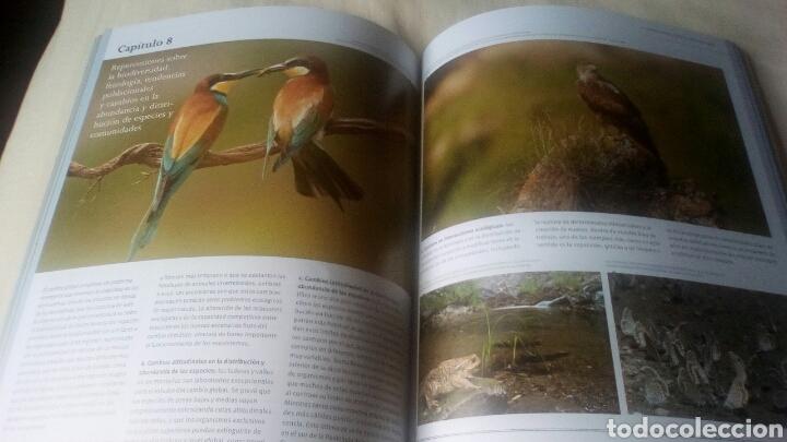 Libros: Observatorio de Cambio Global Sierra Nevada Febrero 2012 - Foto 2 - 228755560
