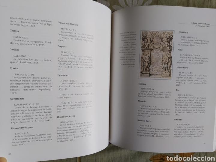 Libros: LA ESCUELA BOTÁNICA VALENCIANA DEL RENACIMIENTO. NUEVO! ED. 2010 - Foto 8 - 229348390