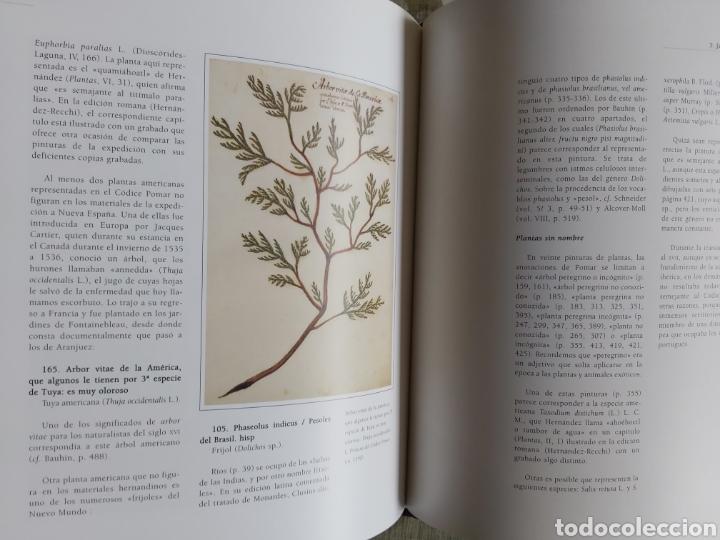 Libros: LA ESCUELA BOTÁNICA VALENCIANA DEL RENACIMIENTO. NUEVO! ED. 2010 - Foto 9 - 229348390