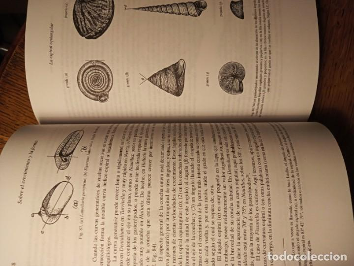 Libros: SOBRE EL CRECIMIENTO Y LA FORMA. DARCY THOMPSON - Foto 3 - 231403350