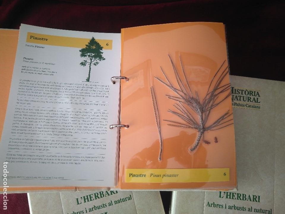 Libros: COLECCION DE 3 TOMOS DE HISTORIA NATURAL DEL PAISOS CATALANS- LHERBARI - Foto 2 - 237675490
