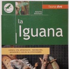 Libros: LA IGUANA FAUNA DVE MASSIMO MILLEFANTI 2005 ED. VECCHI. Lote 252674920