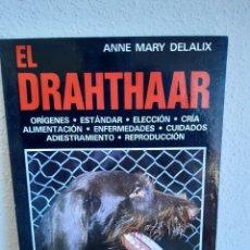 Livros: EL DRAHTHAAR ANNE MARY DELALIX. Lote 263583690