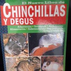 Livros: CHINCHILLAS Y DEGUS. Lote 265494654