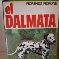 Libros: EL DALMATA FIORENZO FIORONE. Lote 266741648