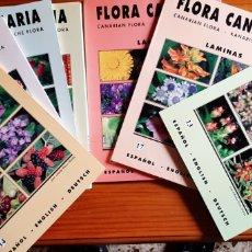 Libros: FLORA CANARIA. Lote 267746524