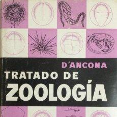 Libros: TRATADO DE ZOOLOGÍA. D´ANCONA. NUEVO. Lote 270914593