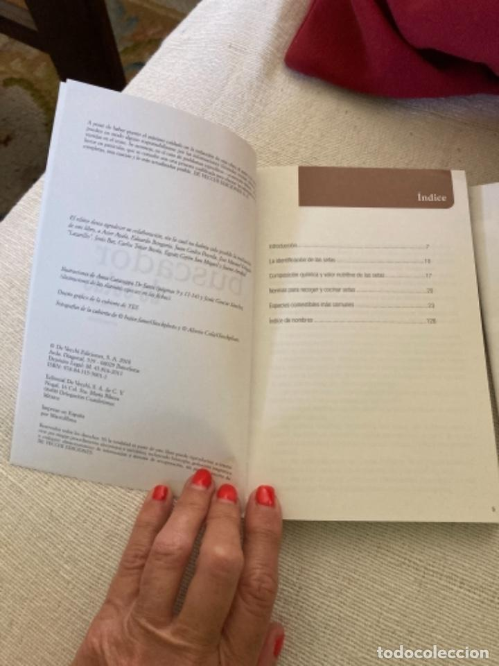 Libros: Guía de campo del BUSCADOR DE SETAS. Como reconocer las mejores setas comestibles - Foto 3 - 271089438